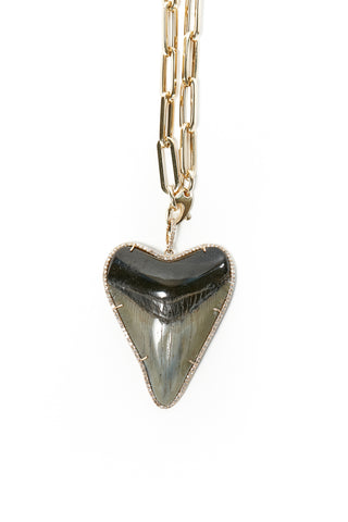 Shark Tooth Pendant