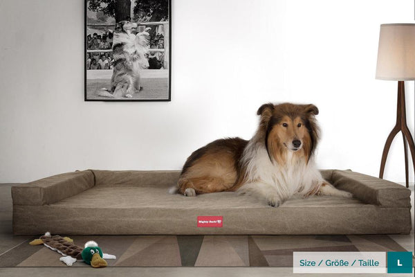 The-Bench-Orthopedic-Memory-Foam-Dog-Bed-Stonewashed-Denim-Earth_2