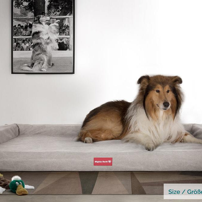 The-Bench-Orthopedic-Memory-Foam-Dog-Bed-Stonewashed-Denim-Pewter_2