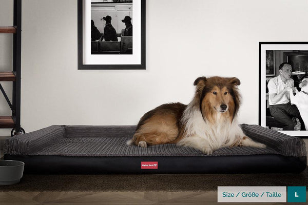 the-bench-orthopedic-memory-foam-dog-bed-faux-leather-black_2