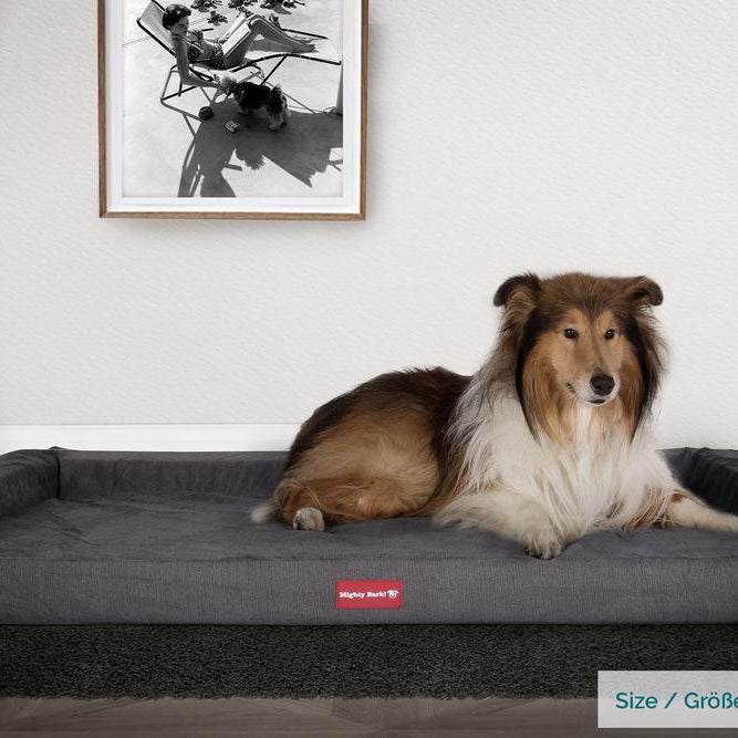 The-Bench-Orthopedic-Memory-Foam-Dog-Bed-Signature-Graphite-Grey_2