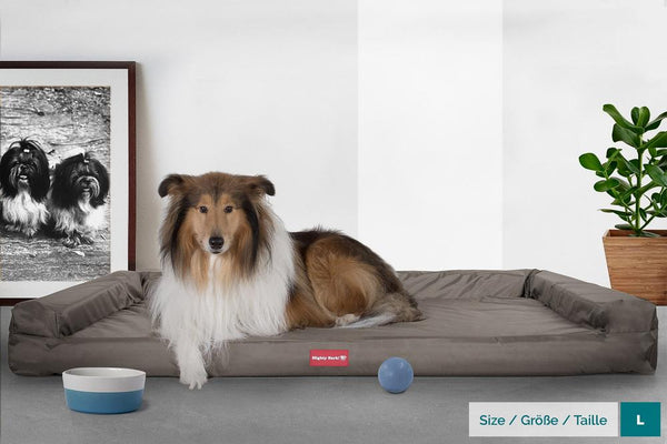 The-Bench-Orthopedic-Memory-Foam-Dog-Bed-Waterproof-Grey_2