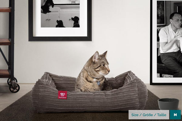 The-Cat-Bed-Memory-Foam-Cat-Bed-Cord-Graphite-Grey_2