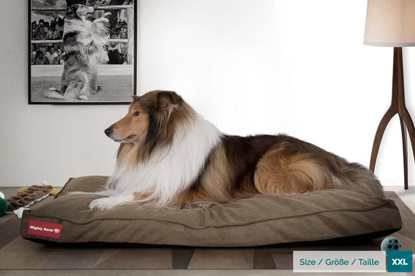 The-Mattress-Orthopedic-Classic-Memory-Foam-Dog-Bed-Stonewashed-Denim-Earth_2