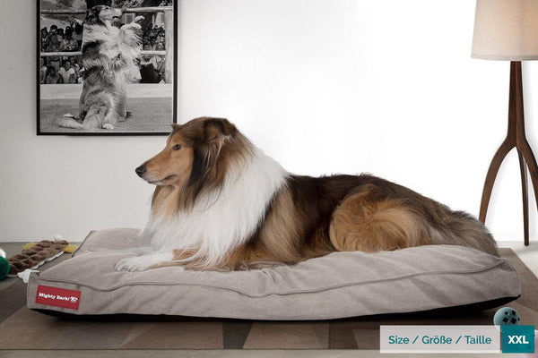 The-Mattress-Orthopedic-Classic-Memory-Foam-Dog-Bed-Stonewashed-Denim-Pewter_2