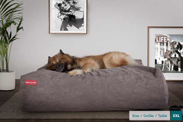 The-Crash-Pad--Memory-Foam-Dog-Bed-Pom-Pom-Charcoal-Grey_2