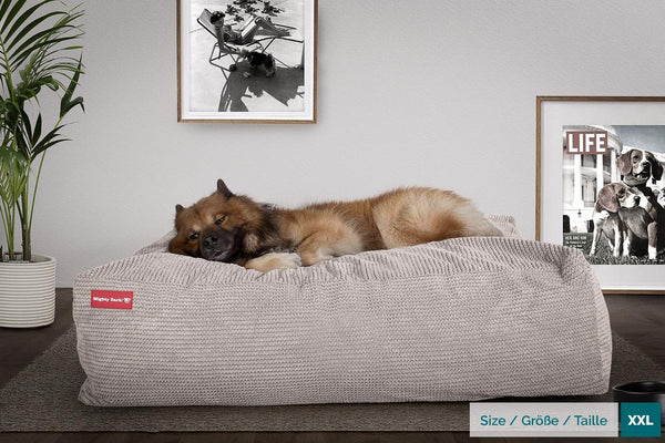 The-Crash-Pad--Memory-Foam-Dog-Bed-Pom-Pom-Mink_2