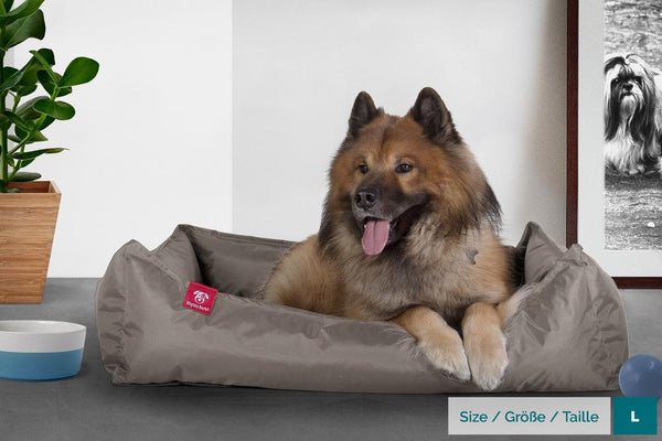The-Nest-Orthopedic-Memory-Foam-Dog-Bed-Waterproof-Grey_2