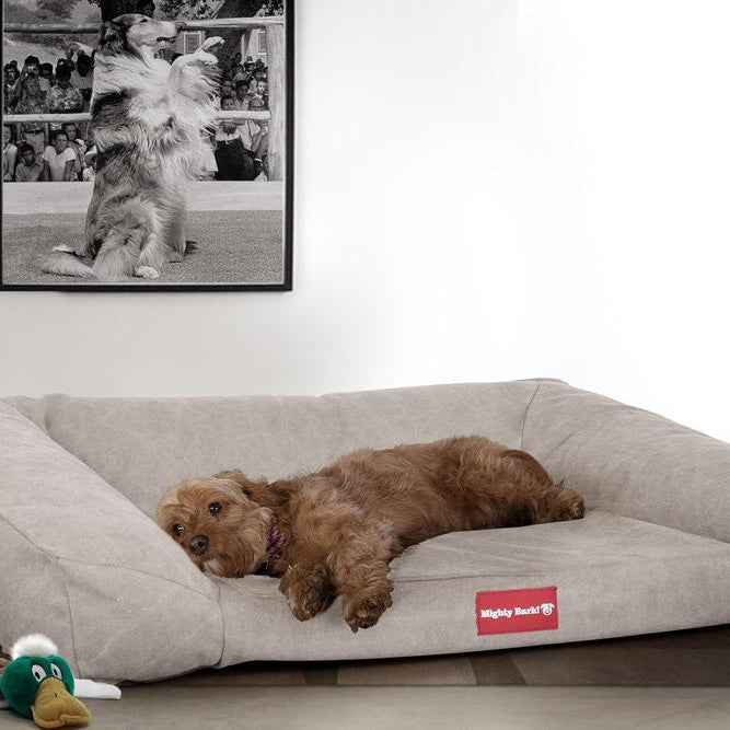The-Sofa-Orthopedic-Memory-Foam-Sofa-Dog-Bed-Stonewashed-Denim-Pewter_2
