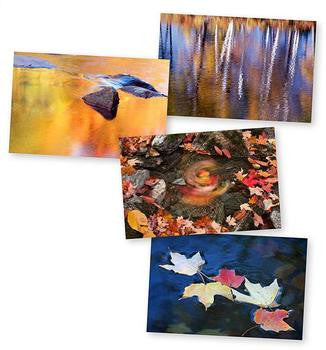 Autumn Details Notecards