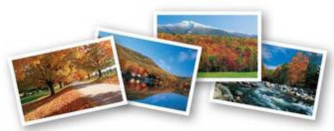 Autumn in Vermont Notecards