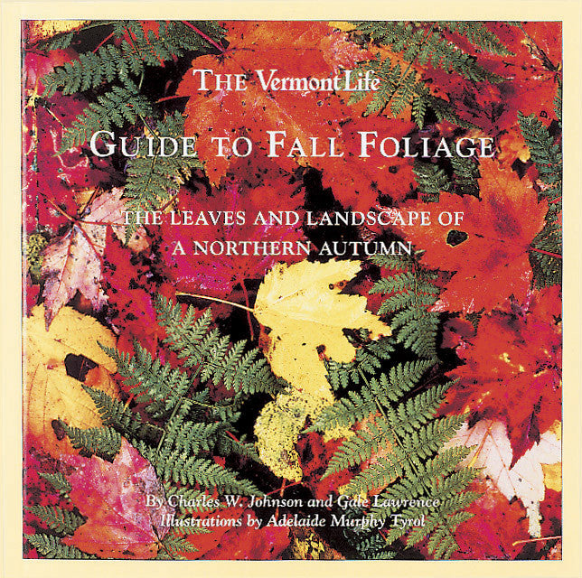 Guide to Fall Foliage
