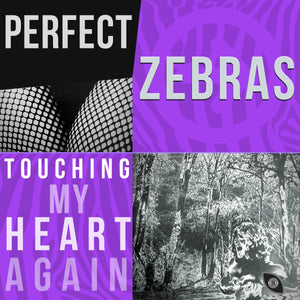Perfect Zebras - Touching My Heart Again