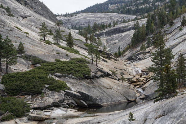 yosemite, nature, organic living