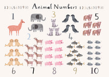 Load image into Gallery viewer, New Animal Number Print - Landscape Format
