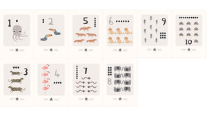 Digital Download  - Animal Counting - A4 Larger Printable Number Flashcards