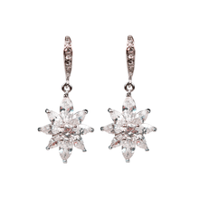 Load image into Gallery viewer, 'You Are The Star' Diamontage™ 5.85 Carat Earrings