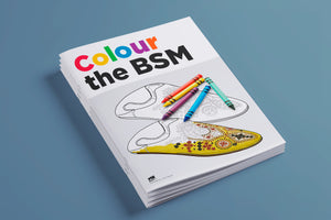 Colour The BSM front cover