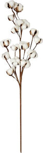 "20"" Cotton Stalk"