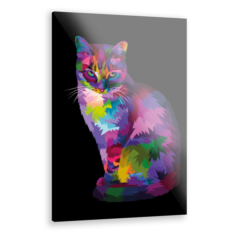 Cuadro Decorativo Gato Vector Multicolor