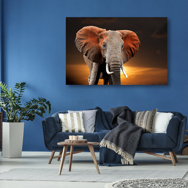 Cuadro Animals Red Elephant