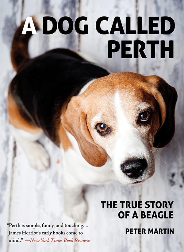 A Dog Called Perth: The True Story of a Beagle-Beagle Generation