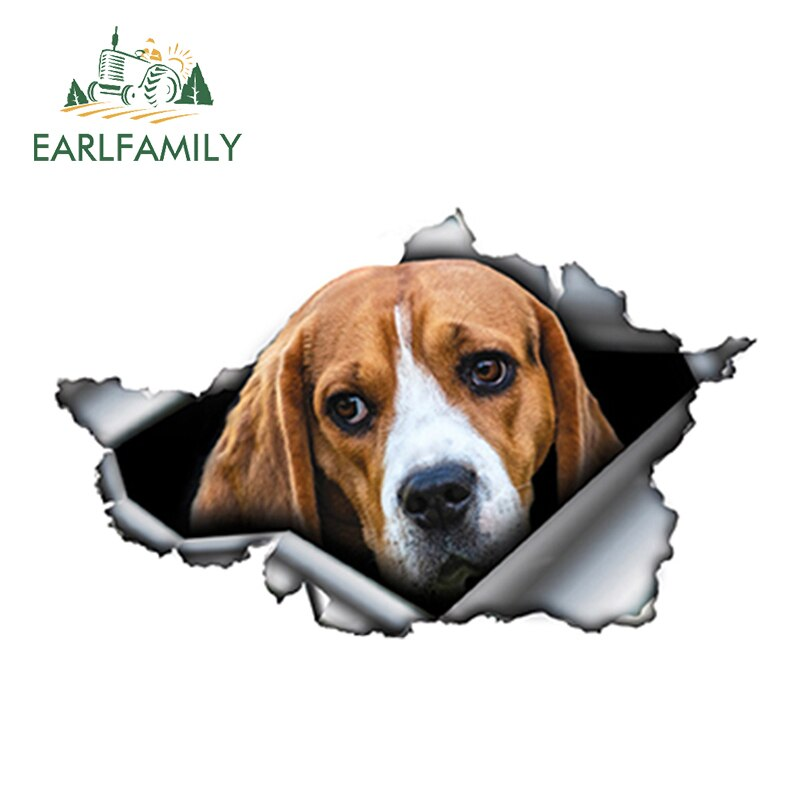 Beagle Car Sticker-Beagle Generation