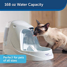 Load image into Gallery viewer, PetSafe Drinkwell Platinum Dog and Cat Water Fountain, Automatic Drinking Fountain for Pets, 168 Oz. - Petizon