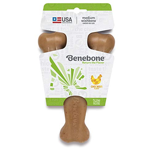 Benebone Wishbone Durable Dog Chew Toy for Aggressive Chewers, Made in USA, Medium, Real Chicken Flavor - Petizon