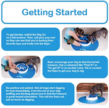 Load image into Gallery viewer, iFetch R-100 iDig Go Digging Toy, IFetch Blue and White, One Size - Petizon