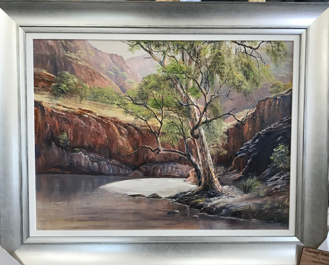 Misty Morning ( Ormiston Gorge )- Guenter Barth