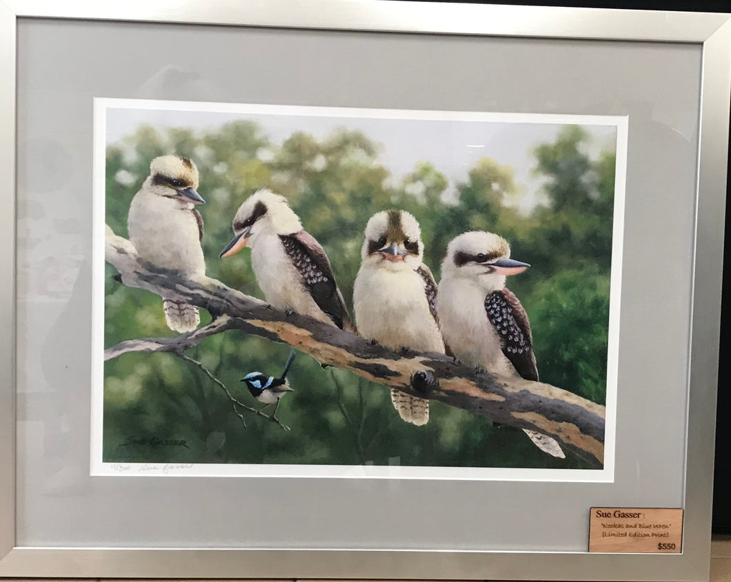 Kookas and Blue Wren - Limited Edition Print - Sue Gasser