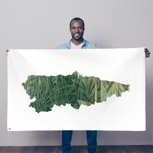 Asturias, Paraíso verde Sublimation Flag