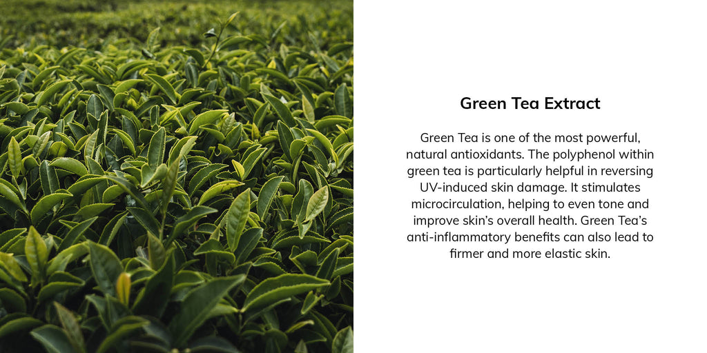 Green Tea is one of the most powerful, natural antioxidants. The polyphenol within green tea is particularly helpful in reversing UV-induced skin damage. It stimulates microcirculation, helping to even tone and improve skin's overall health. Green Tea's anti-inflammatory benefits can also lead to firmer and more elastic skin.