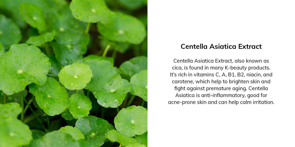 Centella Asiatica Extract, also known as cica, is found in many K-beauty products. It's rich in vitamins C, A, B1, B2, niacin, and carotene, which help to brighten skin and fight against premature aging. Centella Asiatica is anti-inflammatory, good for acne-prone skin and can help calm irritation.