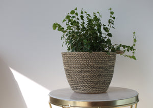 Black Sandstone Plant Pot