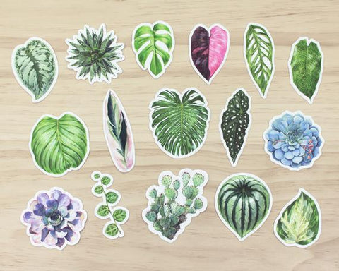 Aaron Plant Stickers