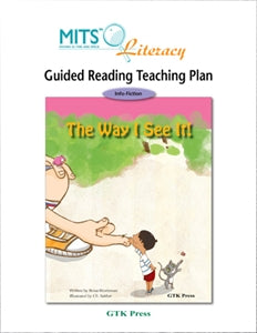 The Way I See It! - teaching plan