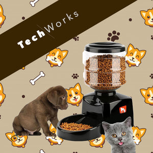 2020 Smart Automatic Pet Feeder 5.5L With Voice Message Recording And LCD Screen