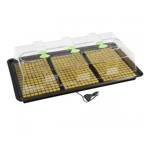 X-Stream Large Heated Propagator with SunBlaster T5 Lights - London Grow