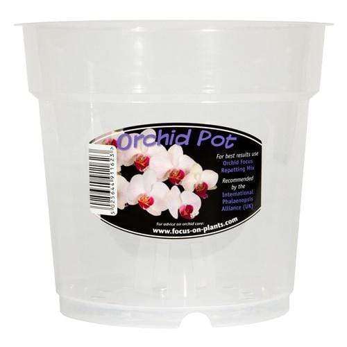 Clear Orchid pot - London Grow