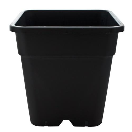 Square Plastic Pot - London Grow