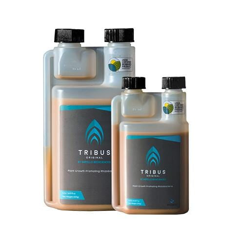 Impello Biosciences - Tribus Original - London Grow