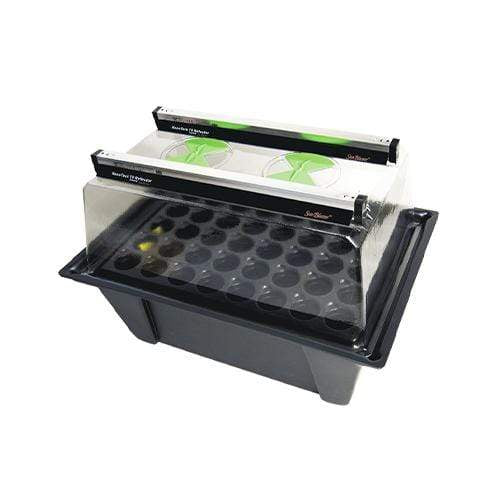 X-Stream Aeroponic Propagator with Sunblaster T5 Lights - London Grow