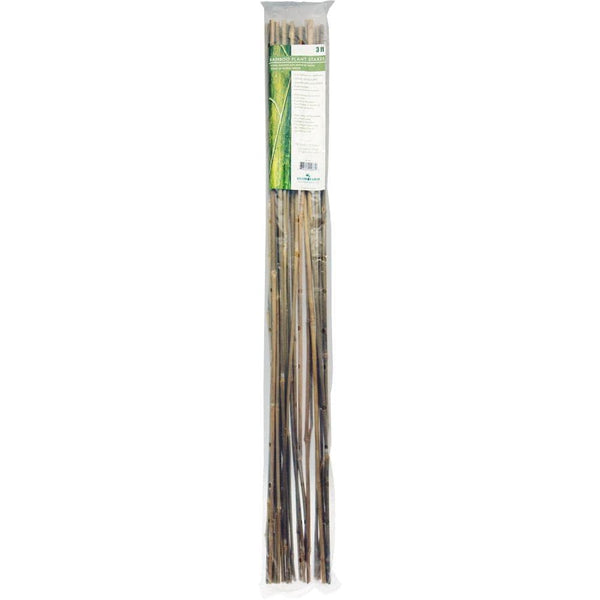 Bamboo Stakes - Pack of 25 - London Grow