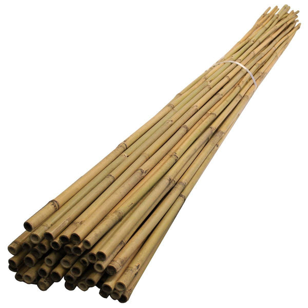 Bamboo Bales - Pack of 250 - London Grow