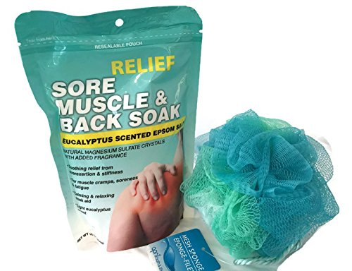 Bath Bundle with Sore Muscle and Back Soak Eucalyptus Scented Epsom Salt and Multi Colored Blue Green Teal Mesh Bath Sponge
