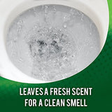 Lime-A-Way Liquid Toilet Bowl Cleaner Remove Lime Calcium Rust 20 oz