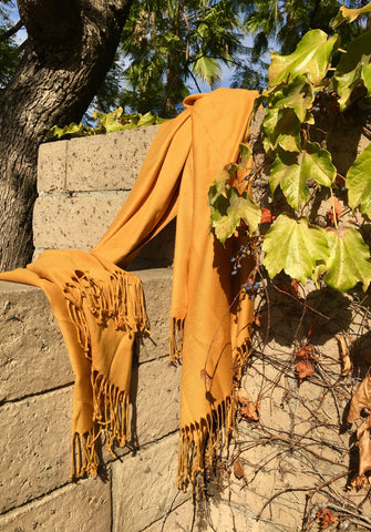 Under the Tuscan Sun Scarf