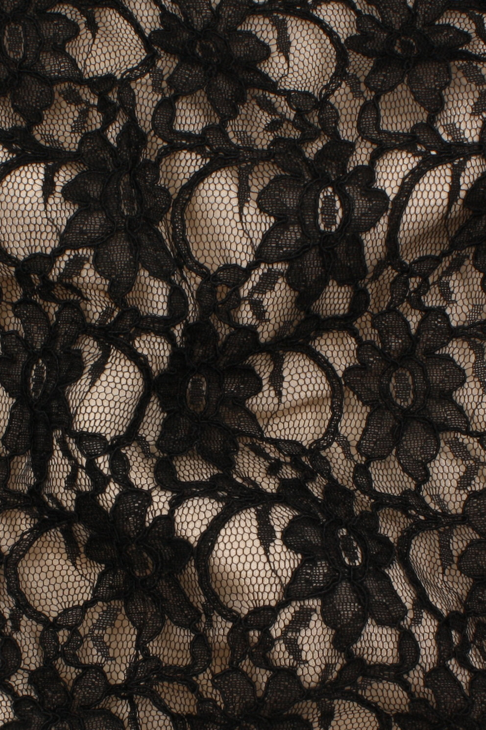 Corded Xanna Lace Black